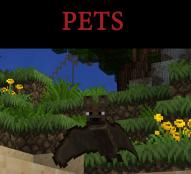 pets thumbnail TAW