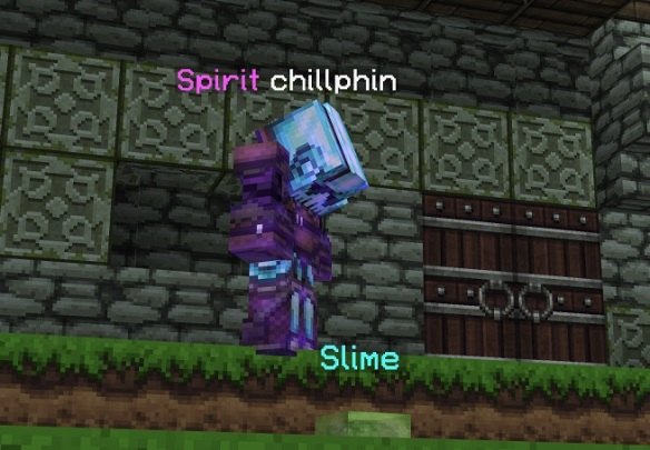 chillphin pet.jpg